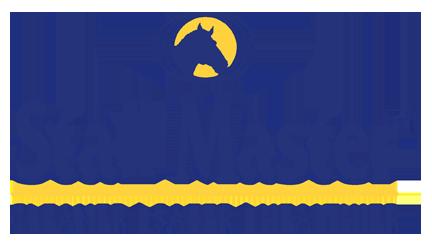 stall master logo